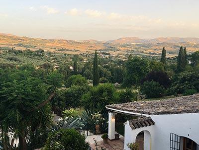 Vino español de Pinoso